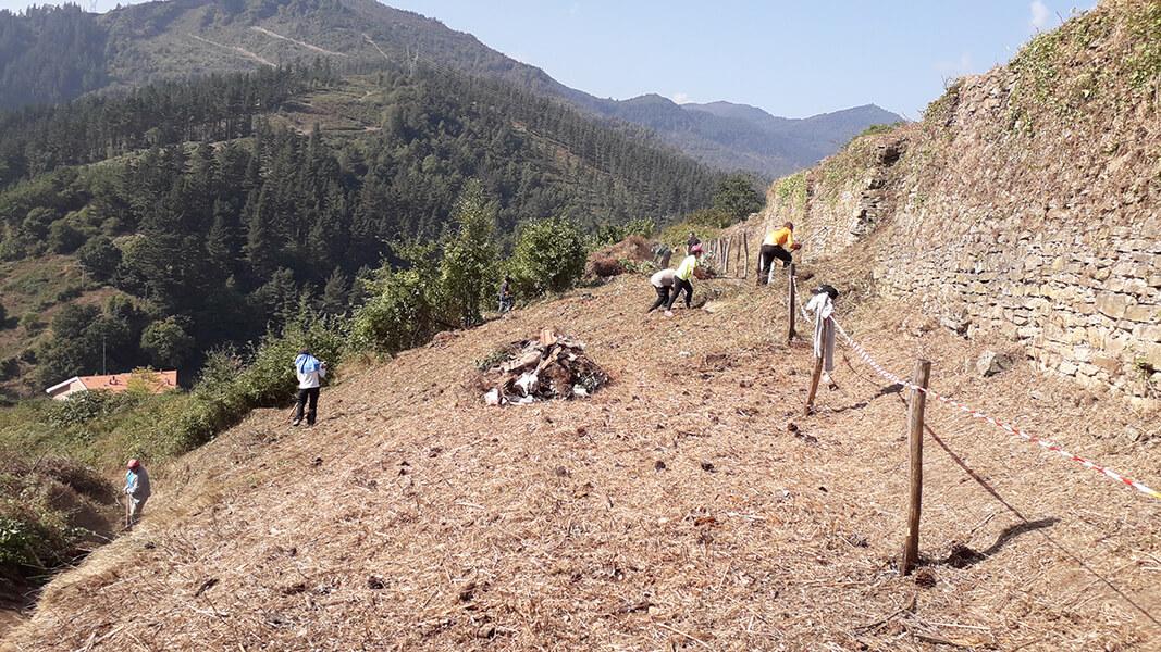 Terminado el auzolan del Cerro del Castillo… de momento